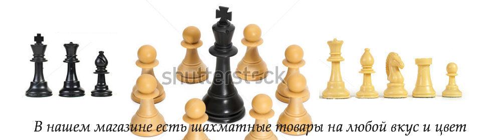 Шахматы общий банер