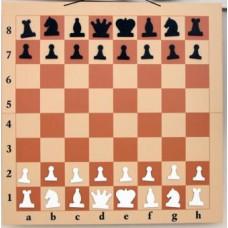 Шахматная доска демонстрационная складная